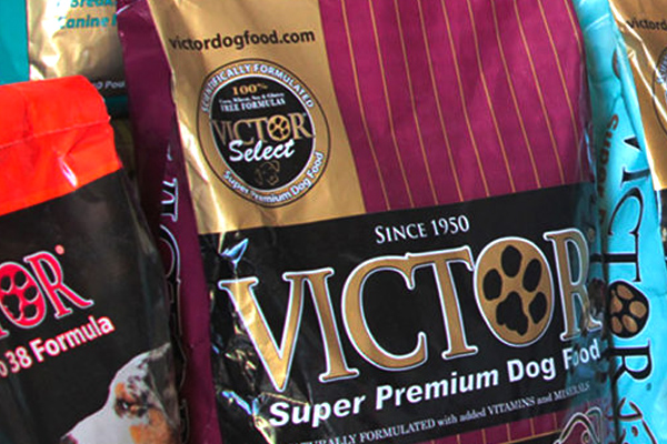 Dog Food for Active Dogs Belton, TX